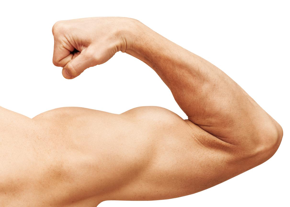 Los mejores ejercicios para fortalecer y trabajar los bíceps